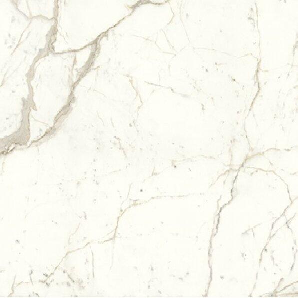 8050-קלקטה פרסטיג'יו